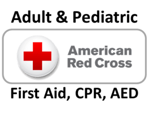 AdultPed-300x227 ARC CPR